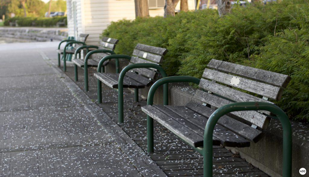 bench-final