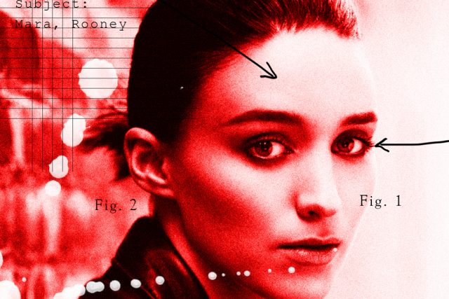 An Unnecessarily Comprehensive Study of Rooney Mara's Face