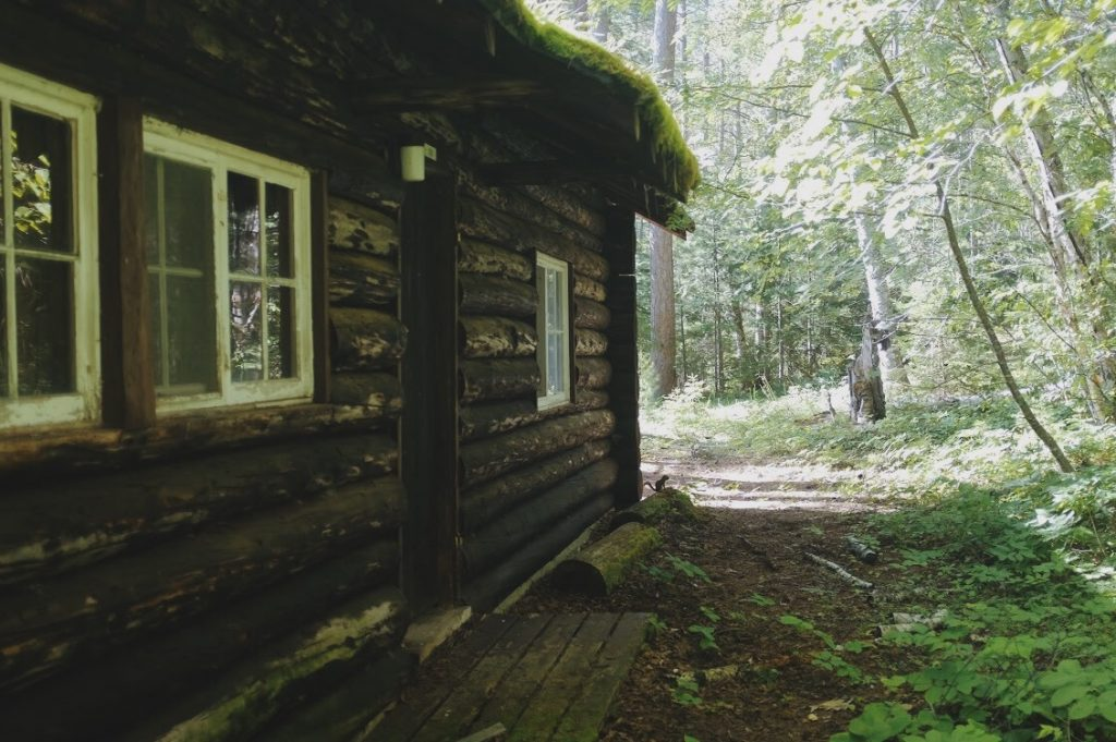 An abandoned staff lodge at Beaver Rock – now home to this chipmunk.