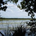 lindsay ken reid conservation area
